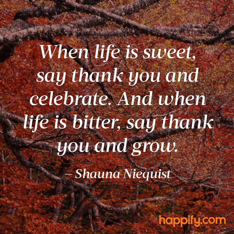 Be Thankful For Bad Experiences Shauna Niequist Happify Daily Delectable Thankful Quotes In Hardships